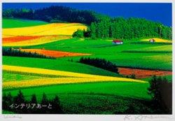 画像1: 渥美顕二 / 真夏の丘